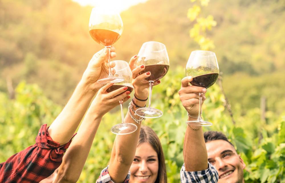 Vino y sus copas: una tendencia continua en España